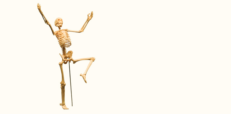 Our Skeleton Can Dance