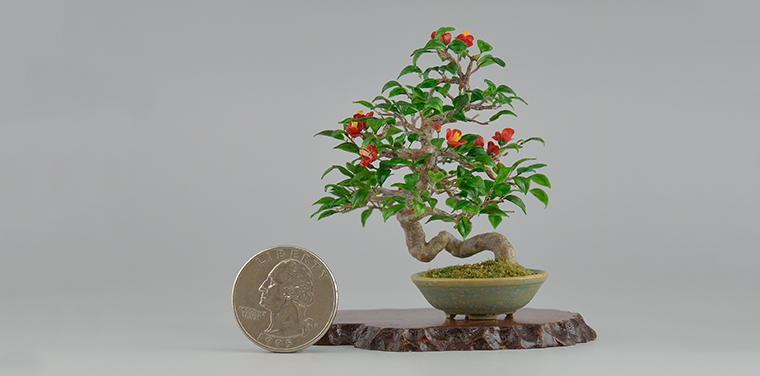 Miniature Masterworks: Hiroyuki and Kyoko Kimura